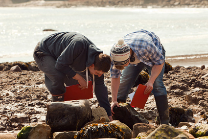 Students exploring the shore. Image: The University of Hull