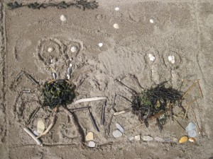 Crab Beach Art